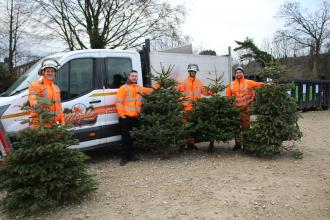 Volunteers out collecting trees in early 2020